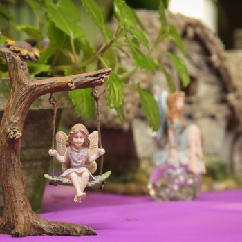 Fairies in our Showroom