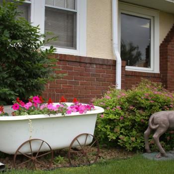 Bath tub flower garden